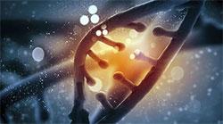 Раскрытие секретов ДНК
