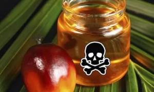 Продукты с пальмовым маслом опасны для раковых больных