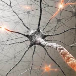 Обнаружена связь ожирения и мозговой активности