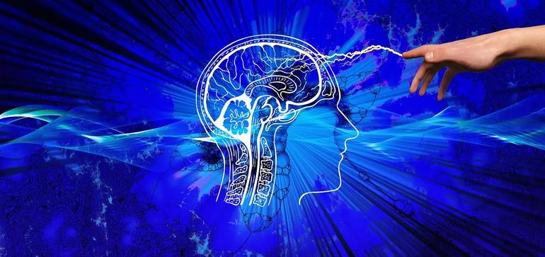Стало известно, как мозгу удается отслеживать собственное перемещение в пространстве