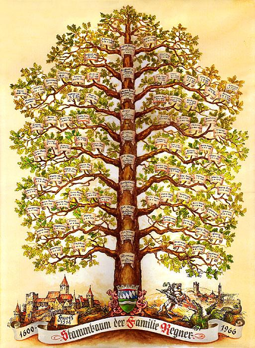 Пренатальное дерево